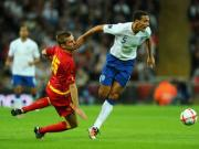 Ferdinand can do what he wants, says disappointed Hodgson