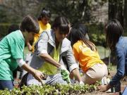 Students help Michelle Obama plant White House vegetable garden