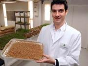 Why not eat more insects to fight hunger, says UN