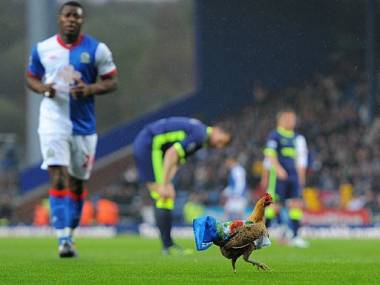 Blackburn have more chicken on their plate now. AFP