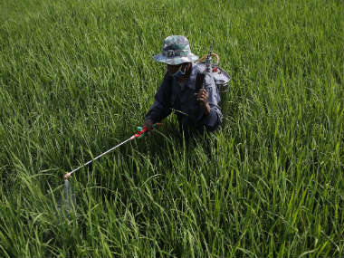Pesticide deaths: Monocrotophos, which helps plants look green, is killing farmers in India