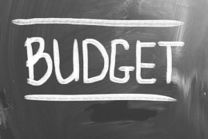 Sorry Mr Jaitley, your Budget 2015 has left the IT industry in the lurch