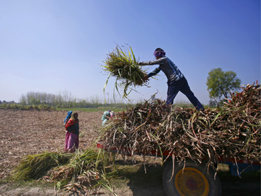 Govt hikes sugarcane price by Rs 20 per quintal to Rs 275 for the next marketing year starting October