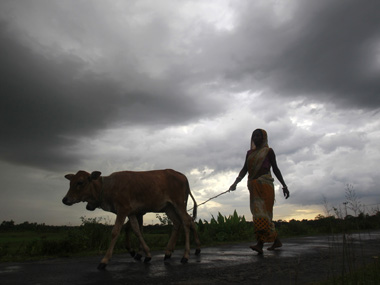 Celebrations can wait One good monsoon will not undo two droughts