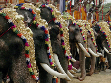 Peta sends legal notice to Kerala govt over issue of ownership of illegally held captive elephants