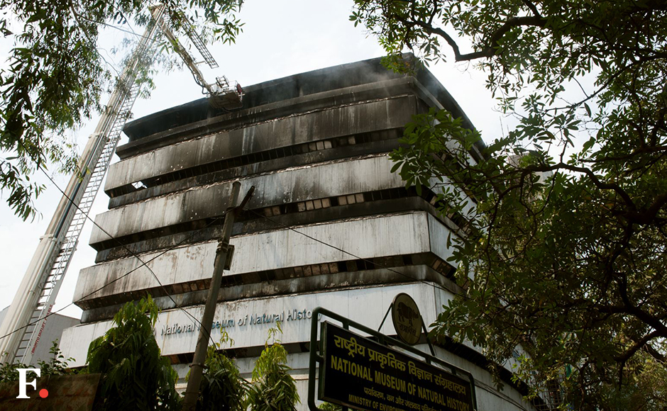 Fire gutted the building of National Museum of Natural History pix Naresh Sharma/Firstpost