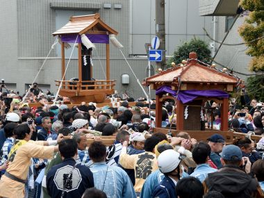 Watch Japans phallus festival is unusual but also educational