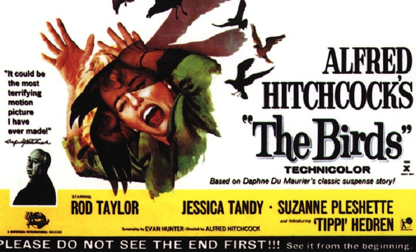 Horror most profound The many layers to Alfred Hitchcocks classic The Birds
