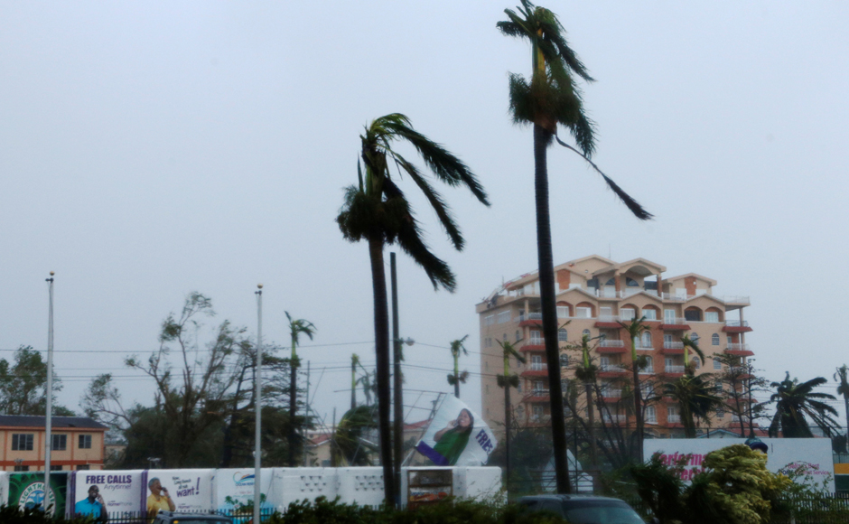Palm trees are seen after Hurricane Earl have hit, in Belize City, Belize. REUTERS/Henry Romero