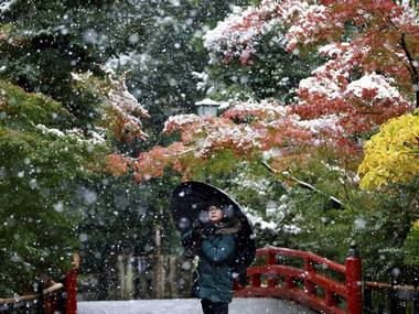 A visitor takes a photo in the snow at the Tsurugaoka Hachimangu Shrine in Kamakura. PTI