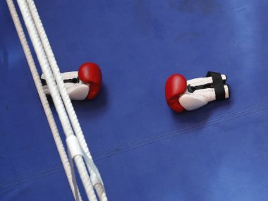 AIBA grants Boxing Federation of India full membership How it impacts pugilists in the country