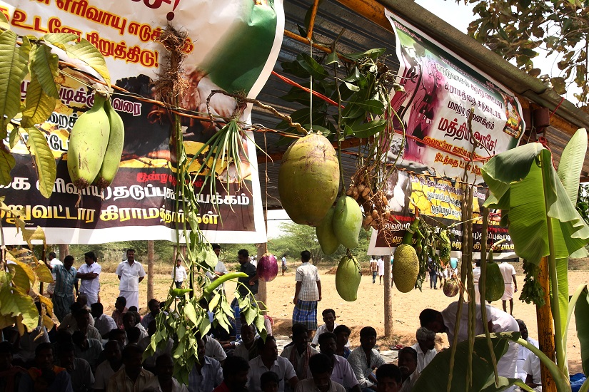 The protestors in Nallandar Kollai strung together some of their agri produce to showcase the fertility of the soil.