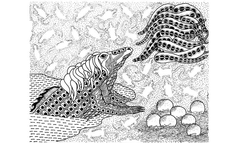 Komodo Tales. Illustration by Nitin Mani