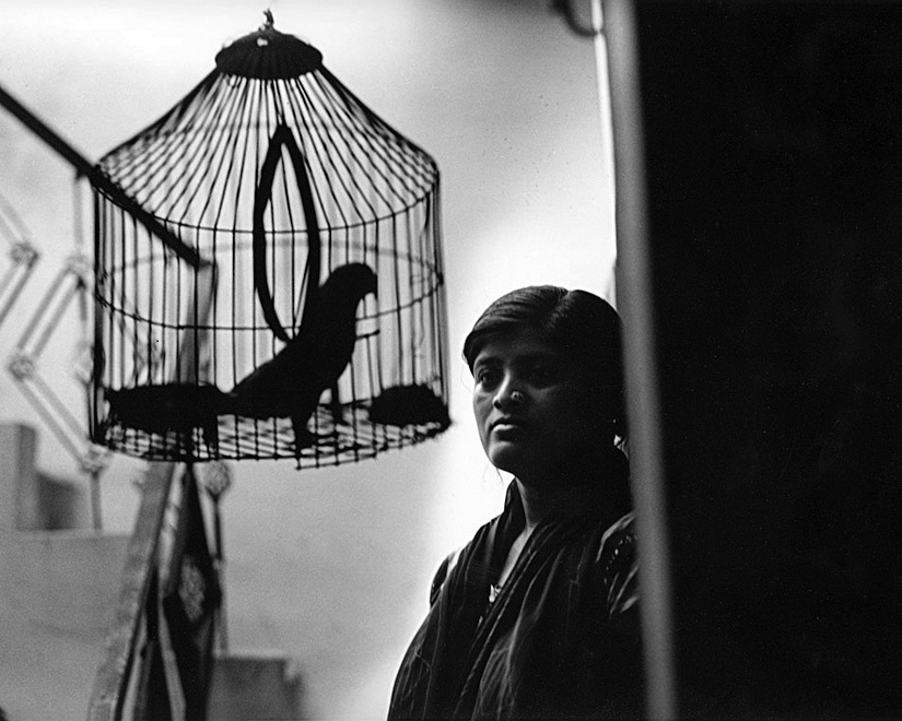 """BIRDS OF A FEATHER: While one is held back by metal fetters, the other's cage is psychological. Nisha, who is beaten black and blue by her husband because she """"doesn't look good"""" finds it difficult to see that a world lies beyond her boundaries. She has gone back to her violent husband because she has two young children and believes she cannot bring them up without him."""
