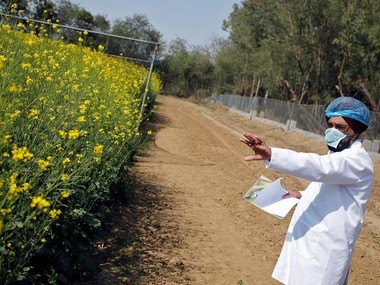 NITI Aayog supports local GM crops to prevent foreign monopolies