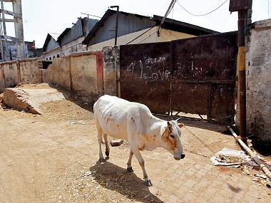 Cow slaughter row Since 2010 97 of beefrelated violence took place after Modi govt came to power