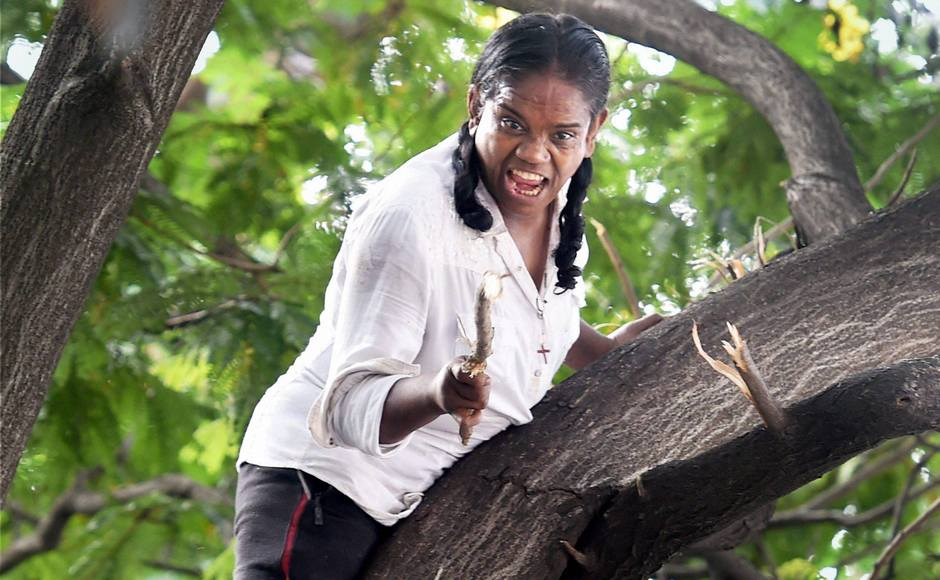 Leaf me alone: Mumbai woman climbs tree near high court, rescued by firemen