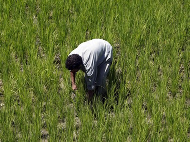 Economic Survey warns that rush of farm loan waivers can cause deflationary shock to economy