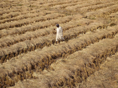 To double farmers' income, additional Rs 6.4 lakh cr investment needed, says govt panel