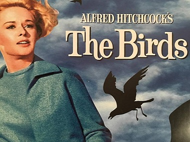 BBC to adapt Alfred Hitchcock's 1963 classic The Birds into TV series