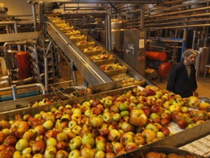 Harsimrat Kaur claims food processing already got $10 bn investment commitment, more expected