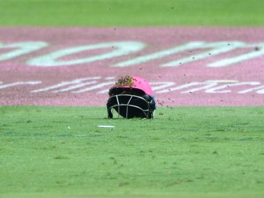 From attack of the bees to pan-fried ball, bizarre incidents that interrupted cricket matches