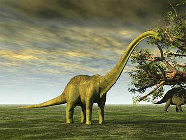 150 million years ago, a 35 metre long sauropod created the longest dinosaur tracks discovered