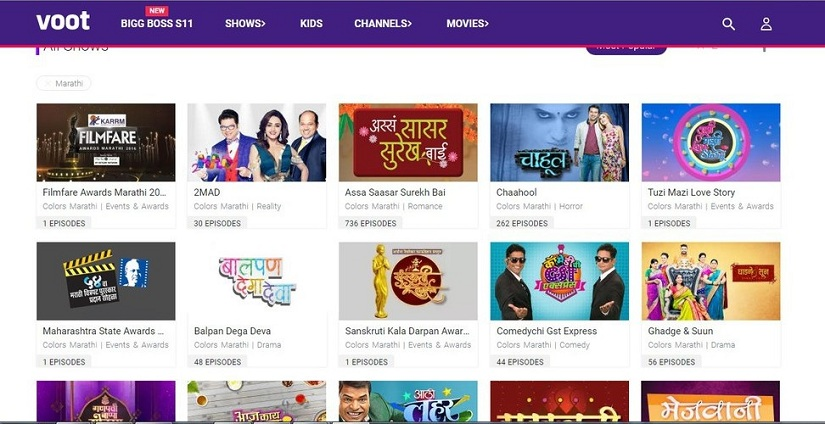 The entertainment sector has woken up to the huge potential of the regional OTT market