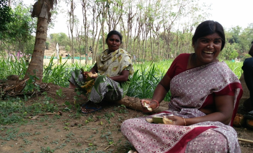 128 landholding 90 work Tamil Nadu women battle patriarchy while shouldering dual burden of housework farming