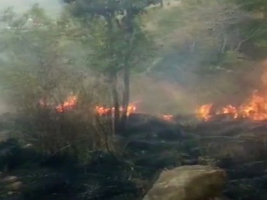 Tamil Nadu Theni forest fire toll mounts to 12 case lodged against trekking club owner