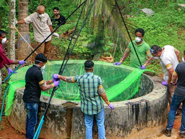 Nipah in Kerala State govt launches search for source of virus identification may be difficult compared to last year