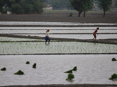 Agricultural crisis Why BJPs poll promise of doubling farmers income by 2022 is a lofty ambition