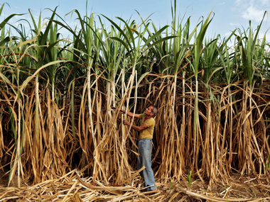 Sugar stocks jump 20 as government raises ethanol price for blending in petrol by 25