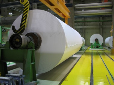 Emami Paper Mills to invest Rs 2000 crore for a greenfield multilayer packaging board plant in Gujarat