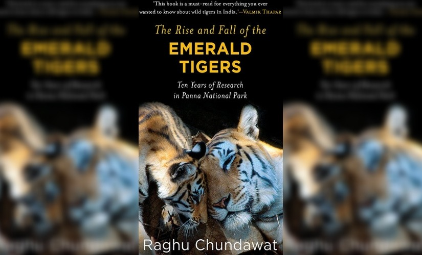 The Rise and Fall of the Emerald Tigers Raghu Chundawats book raises valid concerns but disappoints