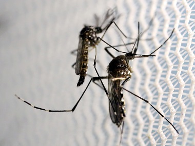At least 2406 cases of dengue reported in Delhi in present season 260 people affected in past week