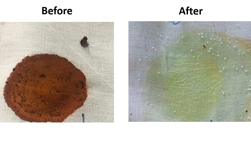 Science vs paan stains How a team from a Mumbai college has used genetic engineering to clean spatter