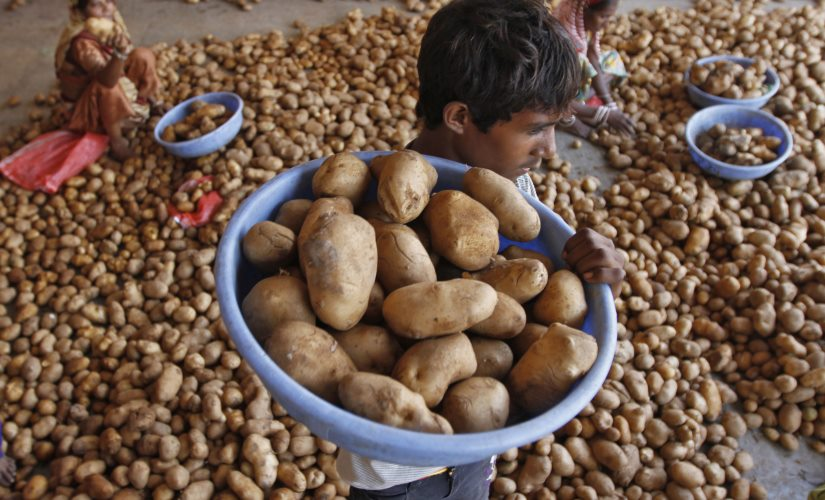 Farm groups protest as PepsiCo sues Gujarat farmers for growing potato variety used to manufacture Lays chips