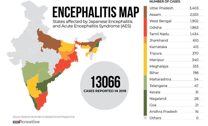 Encephalitis in Bihar Lack of proper preventive measures make brain fever recurrent disease but causative agents continue to elude doctors