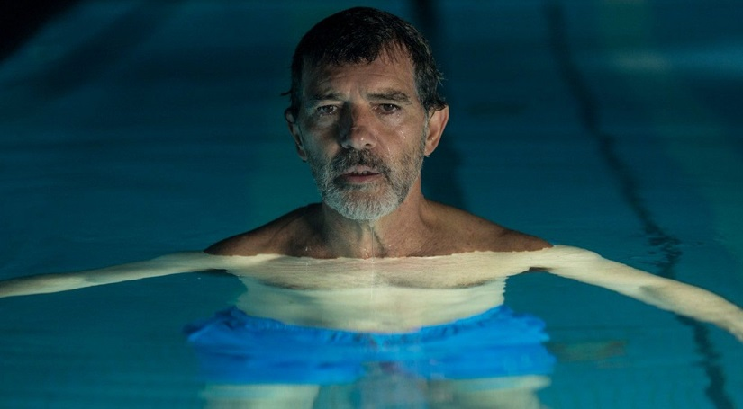 Pedro Almodvars Pain and Glory starring Antonio Banderas selected as Spains entry for Oscars 2020