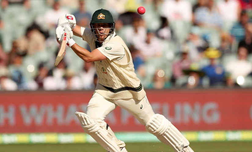 David Warner en route his score of 335 against Pakistan on Day 2 of the second Test at Adelaide. AP