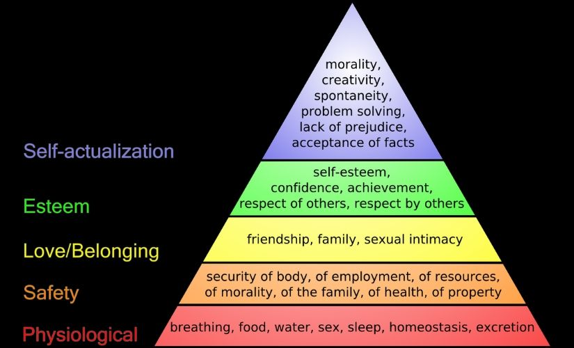 The problem with do what you love The perils of allowing Maslows hierarchy of needs selfactualisation to shape careers
