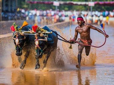 Internetfamous kambala jockey Srinivas Gowda refuses to undergo trials in SAI Bengaluru
