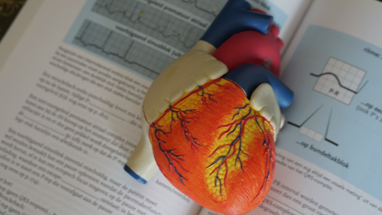 Decoded How COVID19 disease causes heart muscle damage affects heart rate
