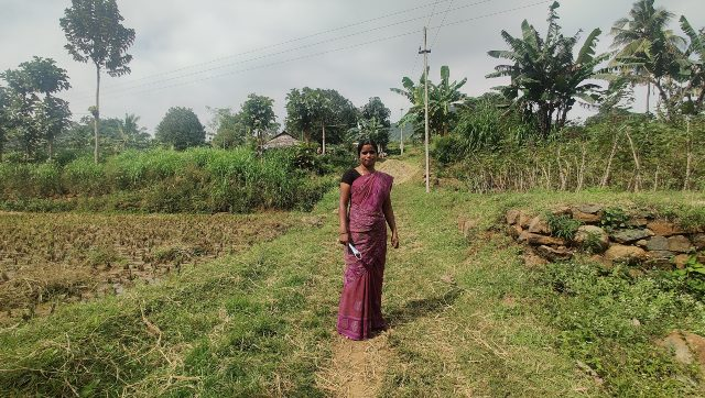 2020 year of the pandemic How COVID19 lockdown in Tamil Nadu washed out this farmers yearly harvest