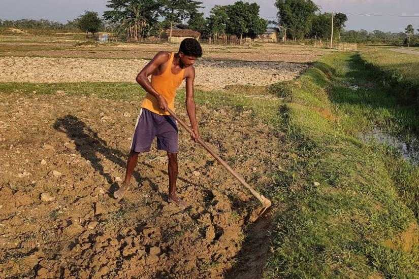 Assam Assembly Election 2021 Eyeing agripreneurship to secure future youths seek govt backing for budding sector