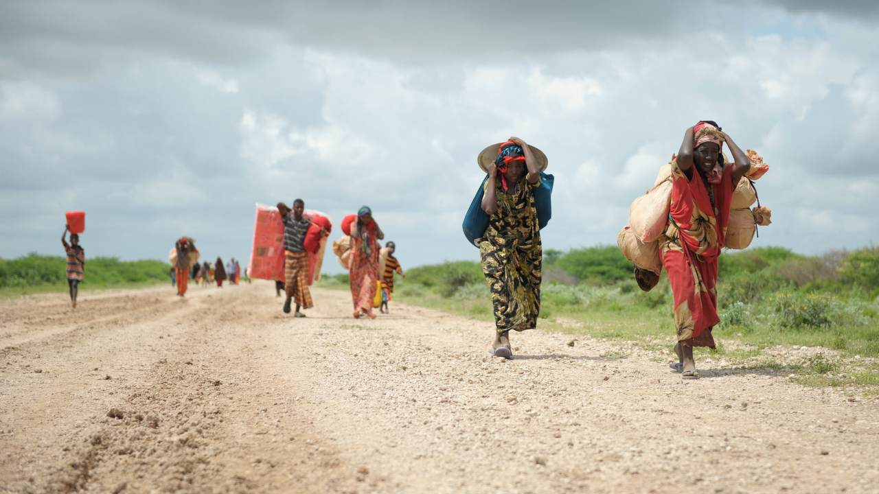 Conflicts and natural disasters in 2020 displaced 405 million people worldwide says report