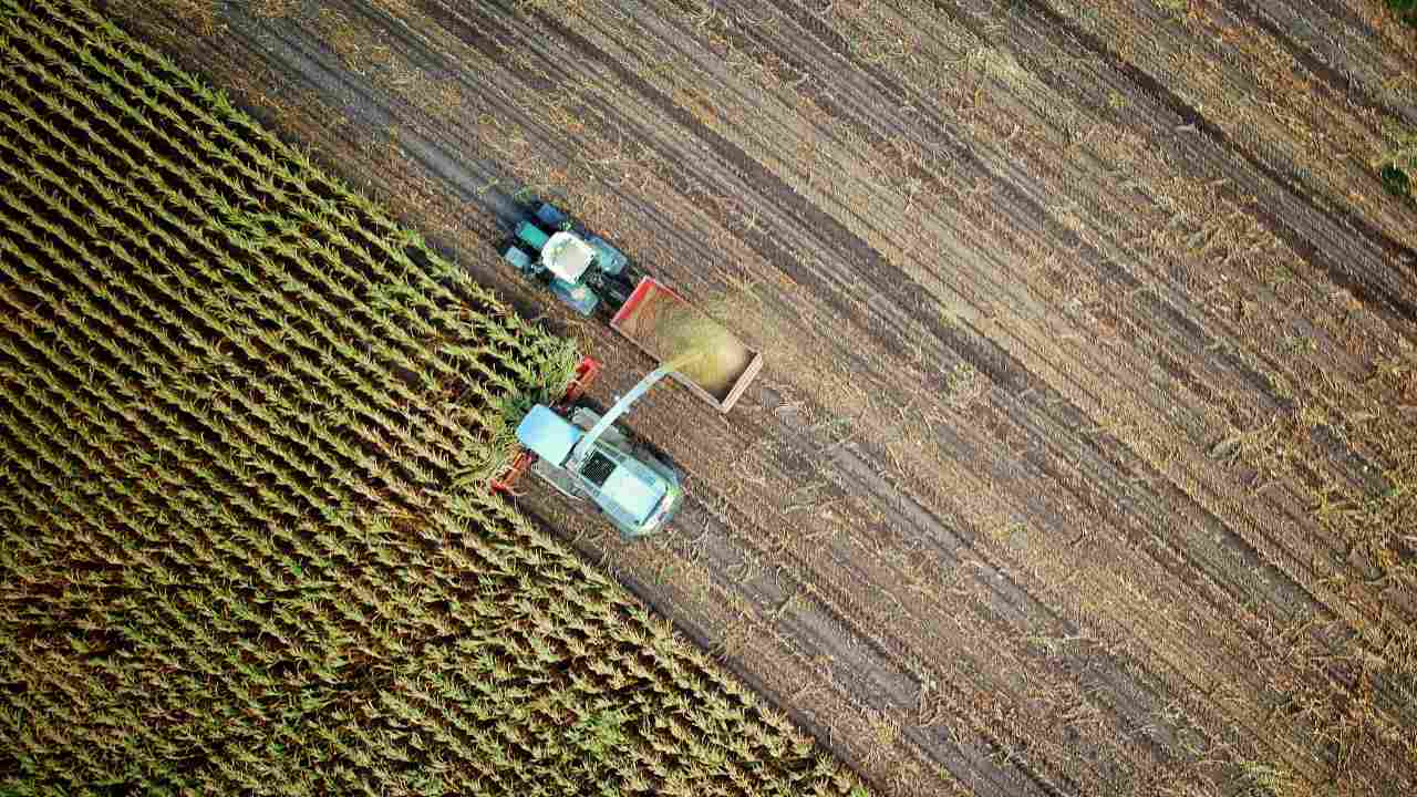 UN food system summit hoped to tackle problem of world hunger provoke the ire of experts and antihunger groups
