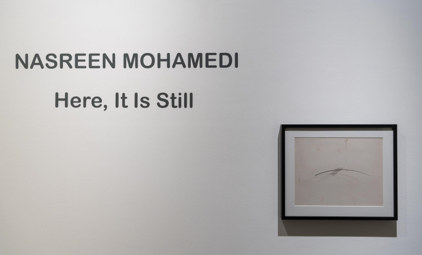 Beyond the line 30 years on Nasreen Mohamedis work continues to mystify with its minimalistic sensory approach